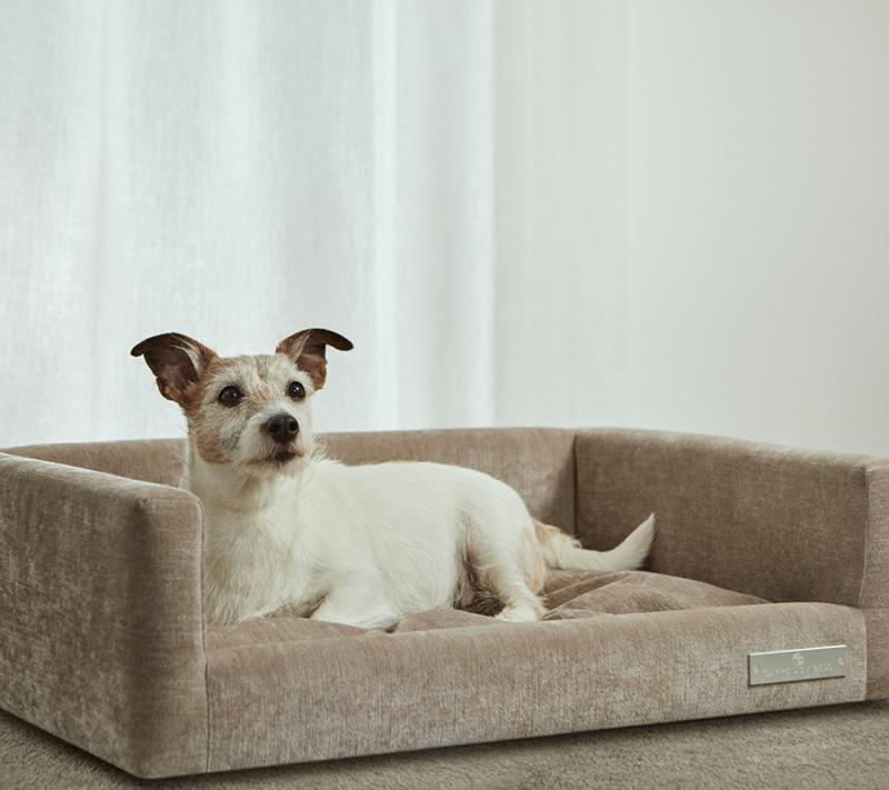 Carpe Diem Hundekurv Small miljøbillede